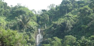 Cikaung waterfall supports life in silence