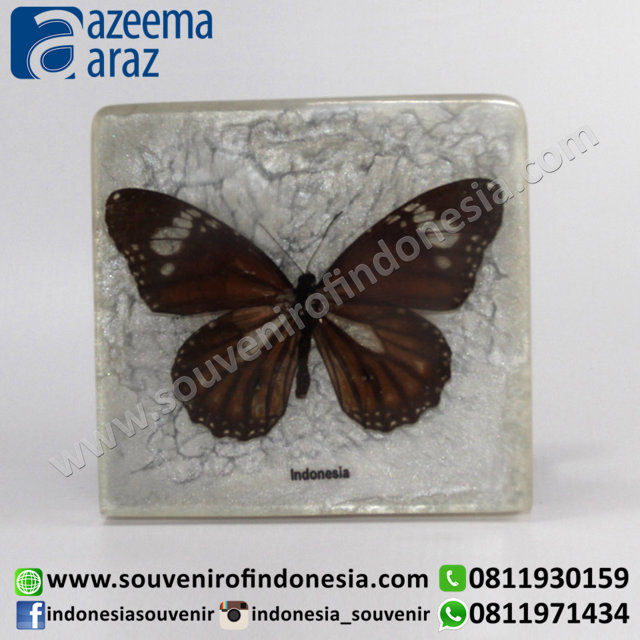 Souvenir Indonesia Tempat Kartu Nama Kupu-Kupu (Butterfly Name Card Holder)