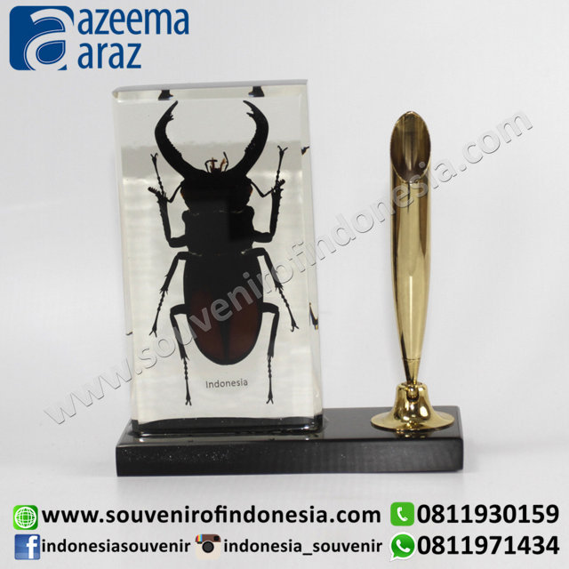 Souvenir Indonesia Tempat Pulpen Kumbang (Indonesia Beetle Pen Holder)